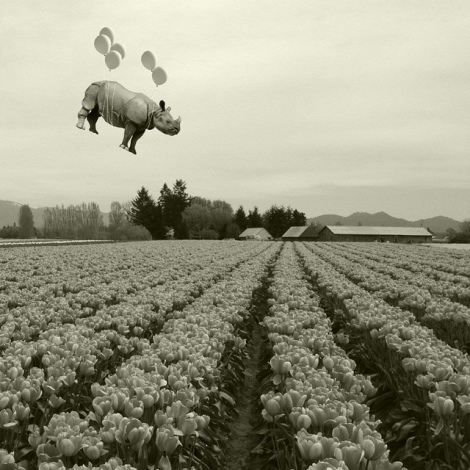 spring has sprung by Janine Graf