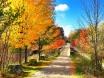 Colors by John Piercy