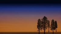 Dawn by David Hayes