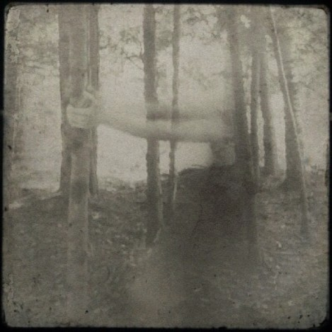 darling shoulders, softly pale - Wood Land series